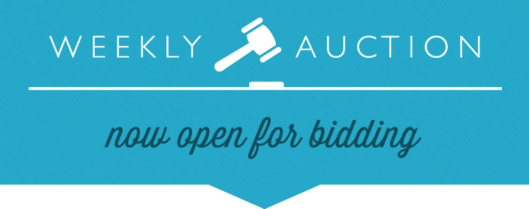 Auction #973 Open! Browse & Bid On Lots Today!