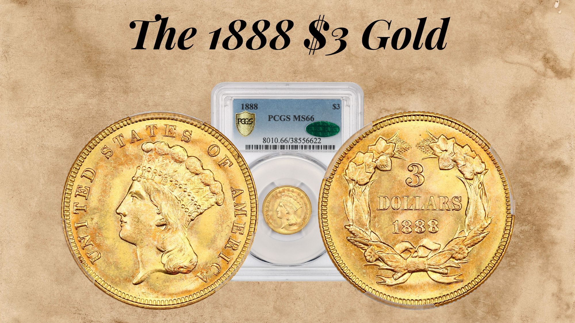 The 1888 $3 Gold
